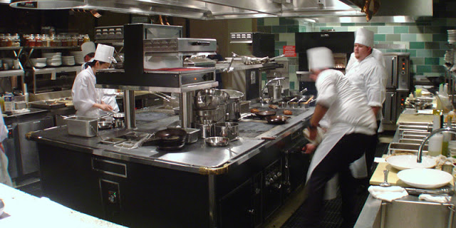 Commercial Restaurant Warewasher Guide